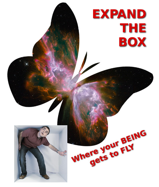 Expand The Box: Vom Kokon zum Schmetterling